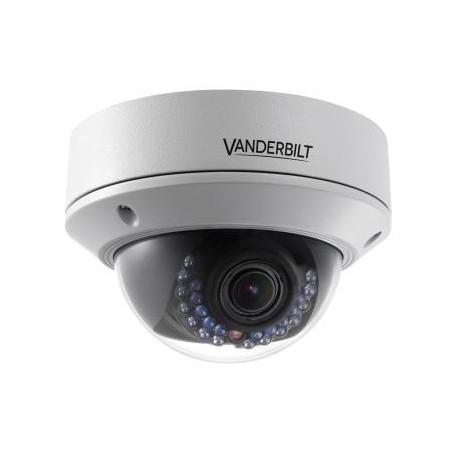 Vanderbilt CVMW2010-VIR